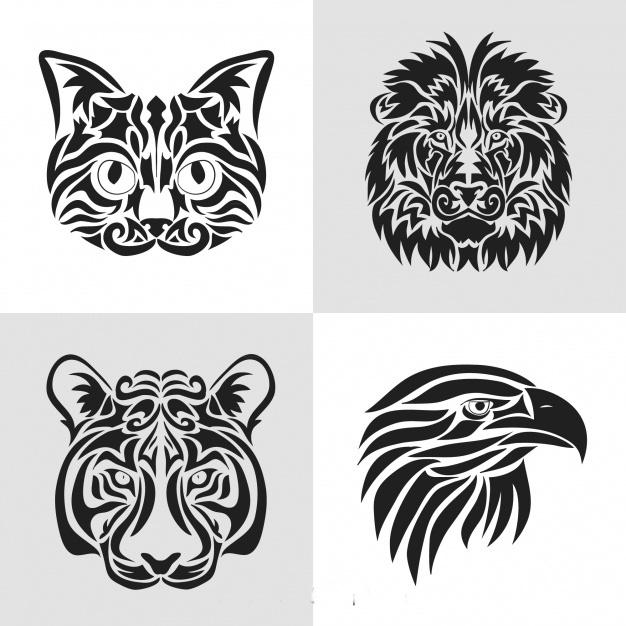 Векторное изображение узор графика кошка лев тигр орел вектор для логотипа и тиснения Chegoods