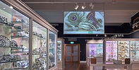 10-things-04-Museum-of-Royal-Worcester.j