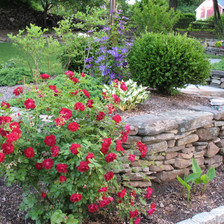 gardens_home.jpg