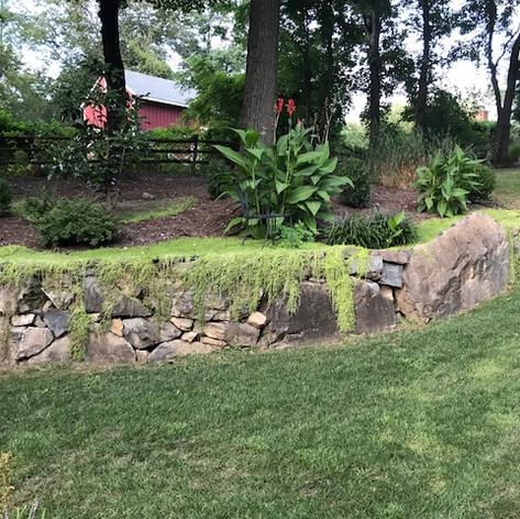 Joe Antine Landscape Designs