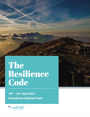 Euphrenity - The Resilience Code.png