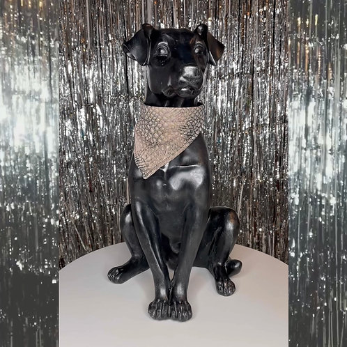 De Vees Doggy in 'Chic Croc'