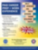 DEA----PWE_flyer.jpg