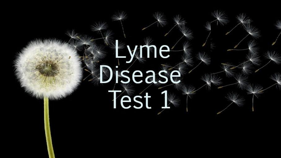 Lyme Disease Test 1 (Lime ELIZA)