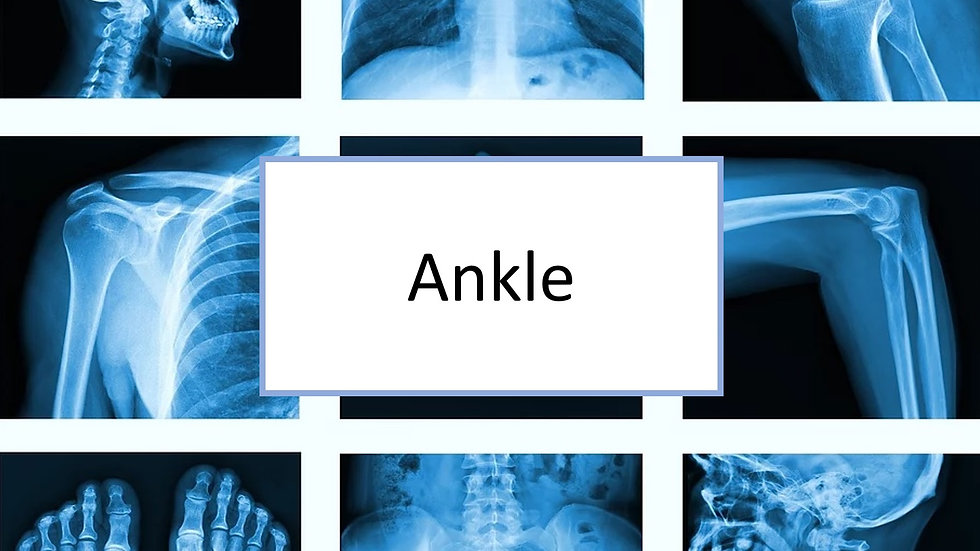 Ankle XR