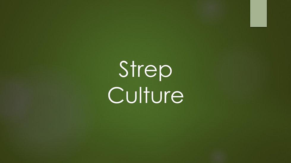 Strep Culture