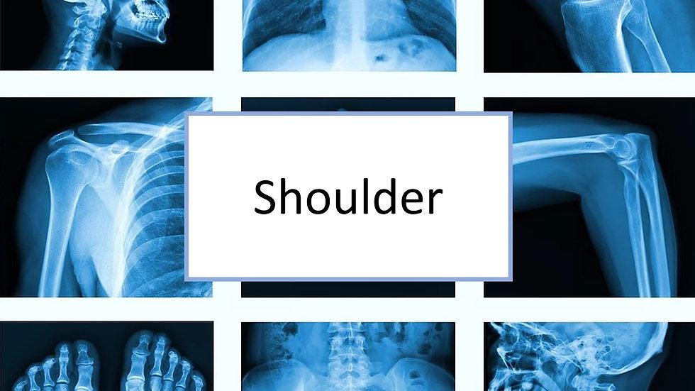 Shoulder XR
