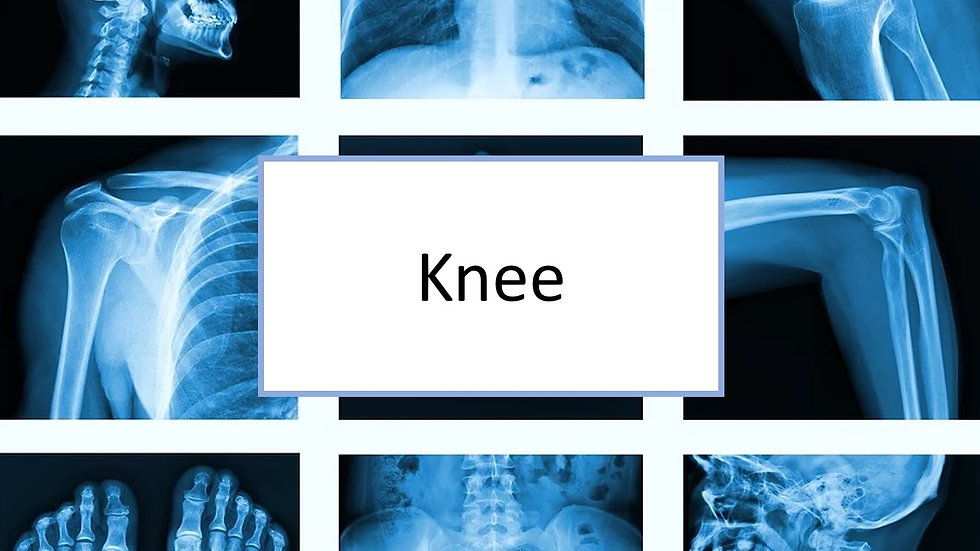 Knee XR
