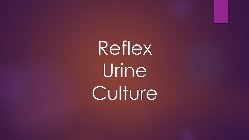 Reflex urine culture (reflex Ucx)