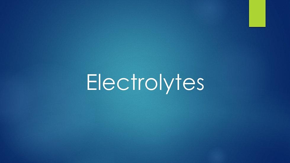 Electrolytes (BMP, Renal Panel)