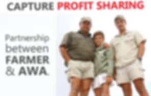 profit-sharing.jpg