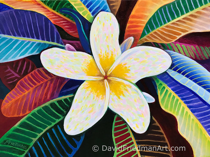 Plumeria Mandala