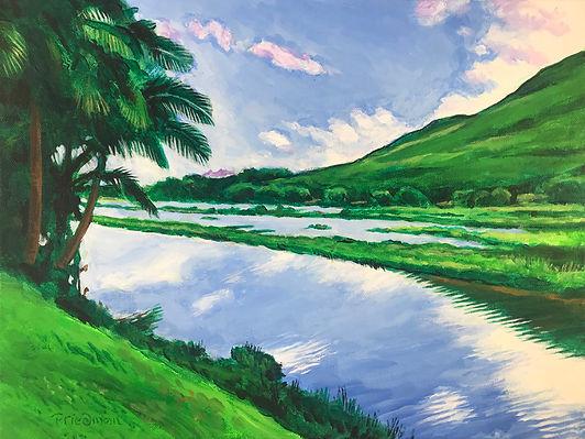 Hāmākua Marsh.jpg