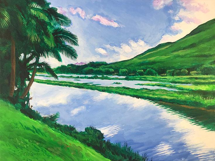 Hāmākua Marsh