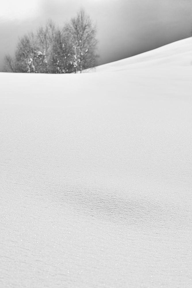 snowland 2