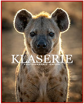 Klaserie Photographic Safari Poster.jpg