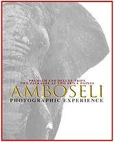 Amboseli Poster.jpg