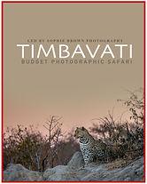 Timbavati Budget Poster.jpg