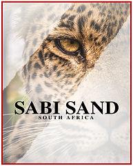 Sabi Sand.jpg