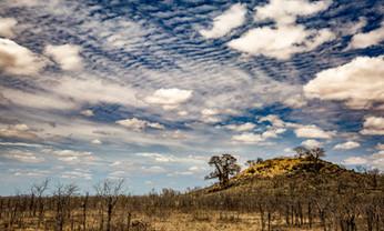 Kruger Clouds