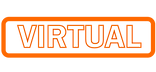 virtual logo.png