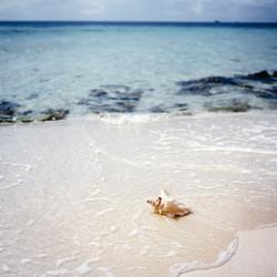 Belize-95