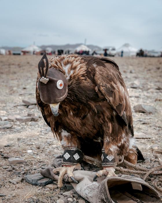 Mongolia-64