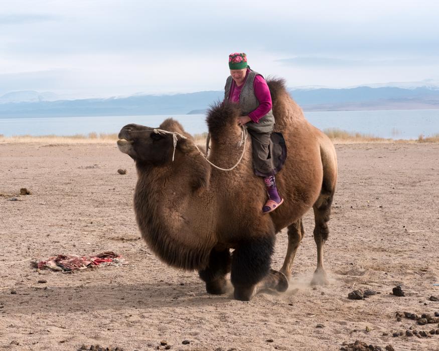Mongolia-99