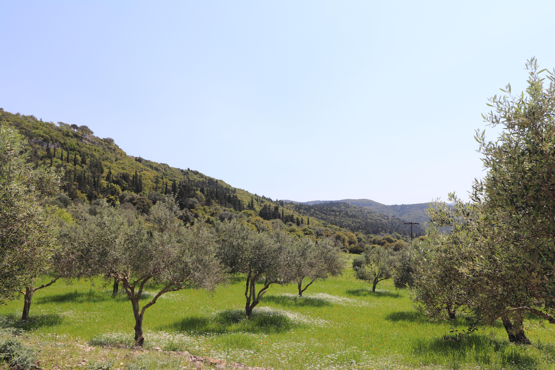 Spring in Kefalonia