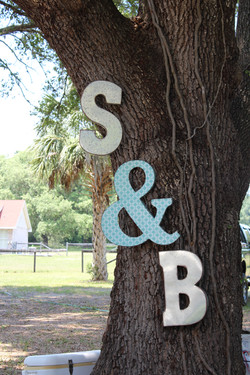 Initials on tree.jpg