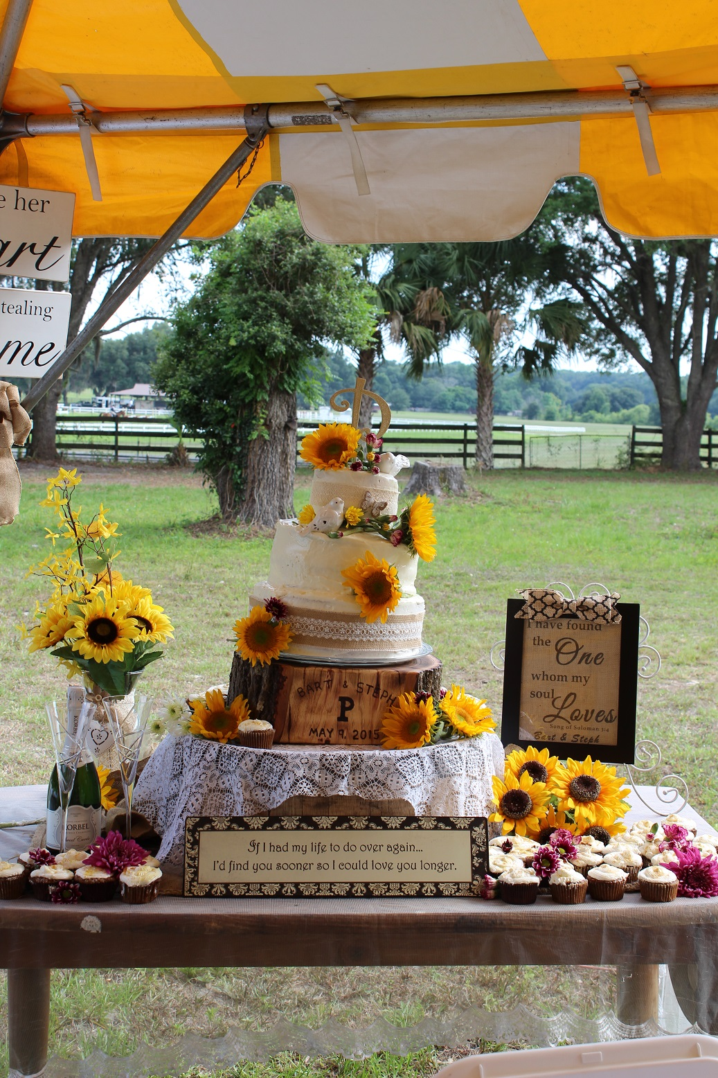 Cake table with cake