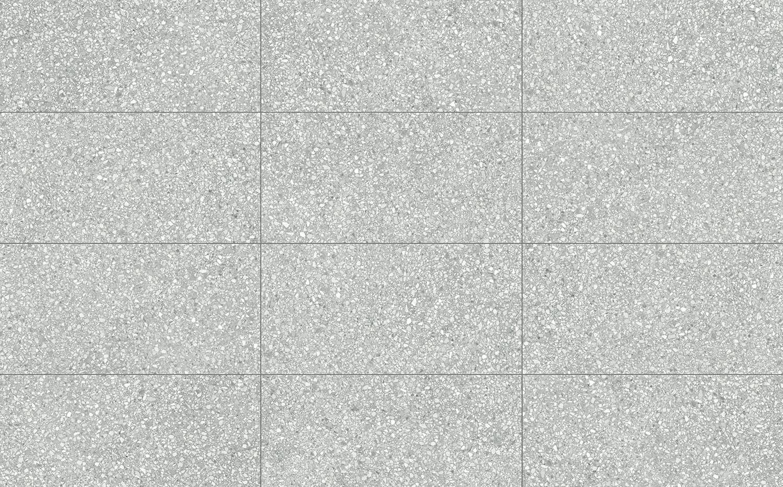 69-476_12x24_Station_Ash_HD_Rectified_Po
