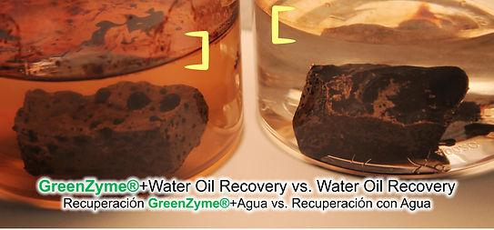 comparacion del recupero de crudo con enzima vs agua