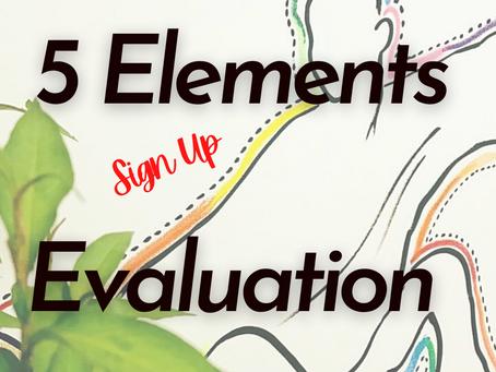 5 Elements Evaluation