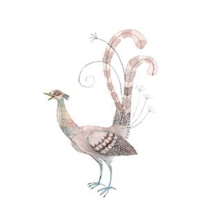 flibbertigibbet bird