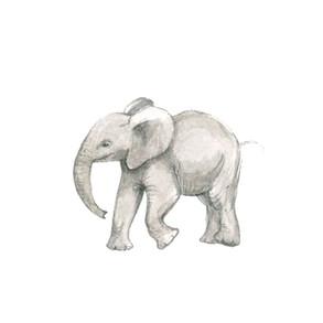 little elephant running