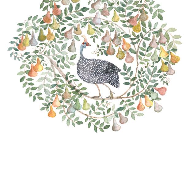 guinea fowel in a pear tree