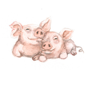 valentines pigs