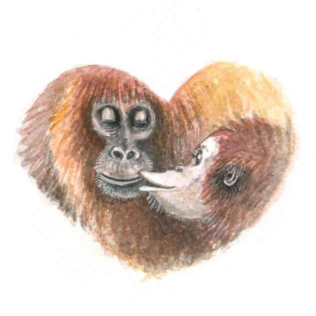 valentines orangutang