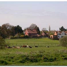 Norfolk Broads Walks