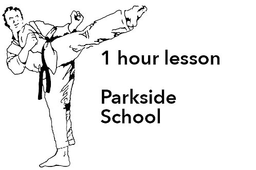Lessons at Parkside School - 1 hour lessons