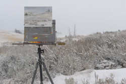 Painting in a snow storm