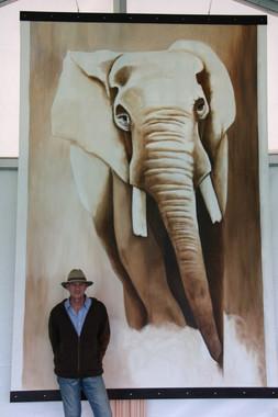 Elephant Taille réelle