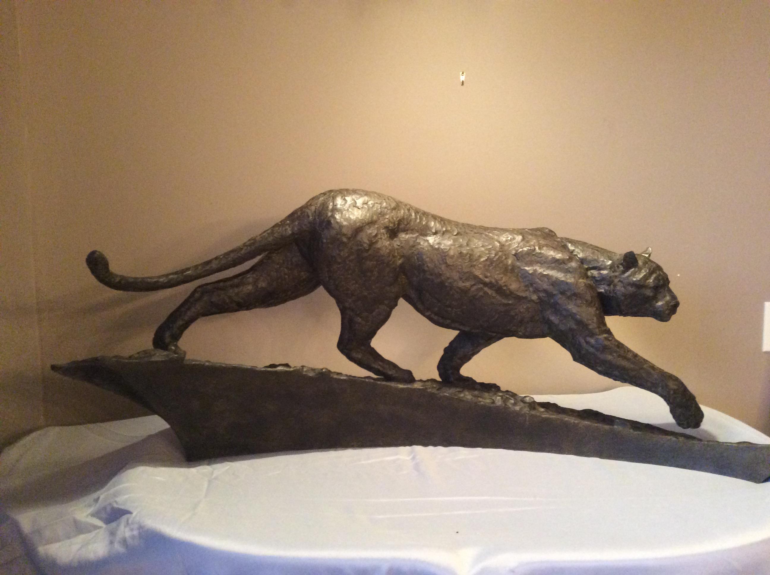 Flow - cougar in bronze