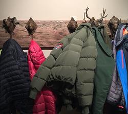 Wildlife Coat Rack