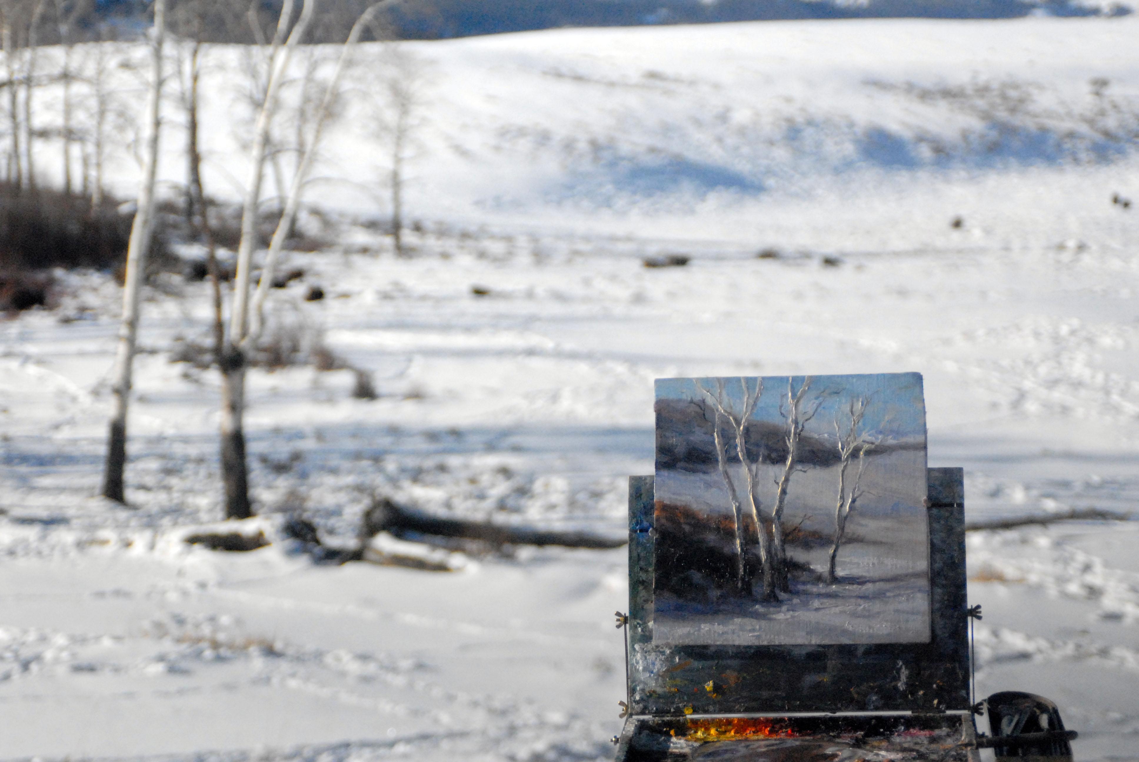Winter aspens in Little America