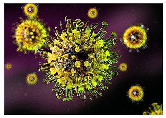 Virus 02