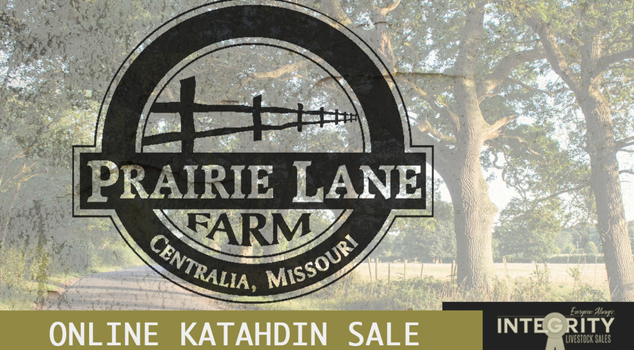 Prairie Lane Farm Online Sale