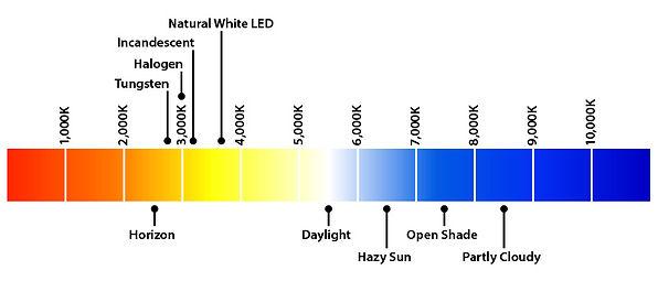 LightTypesKjpg.jpg