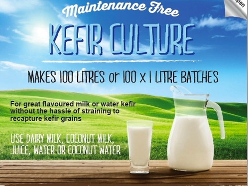 Maintenance Free Kefir Culture - 100 litres